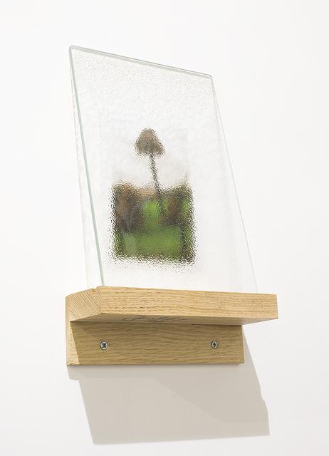 , 'Dispositivo per non vedere bene le immagini,' 2015, MATÈRIA