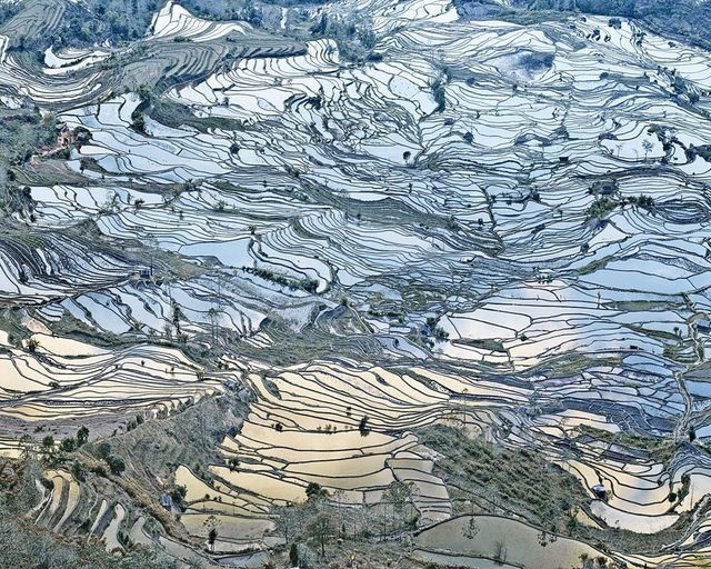 , 'Rice Terraces, (Laohuzui I), Yunnan, China,' 2013, Galerie de Bellefeuille