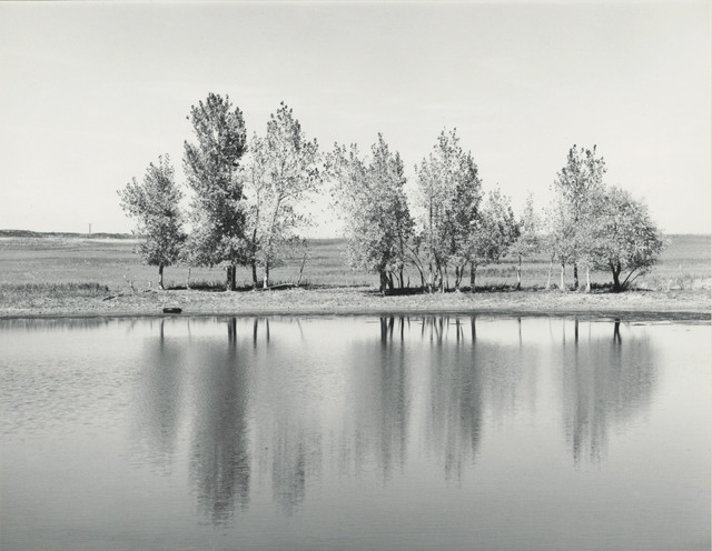 , 'Farm Pond About to be Destroyed by Earth Moving Machinery,' 1977, Lee Gallery