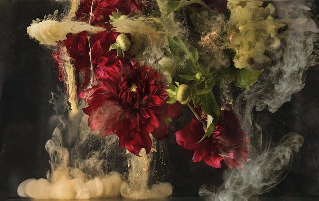 , 'Flora I,' 2016, Edition EKTAlux