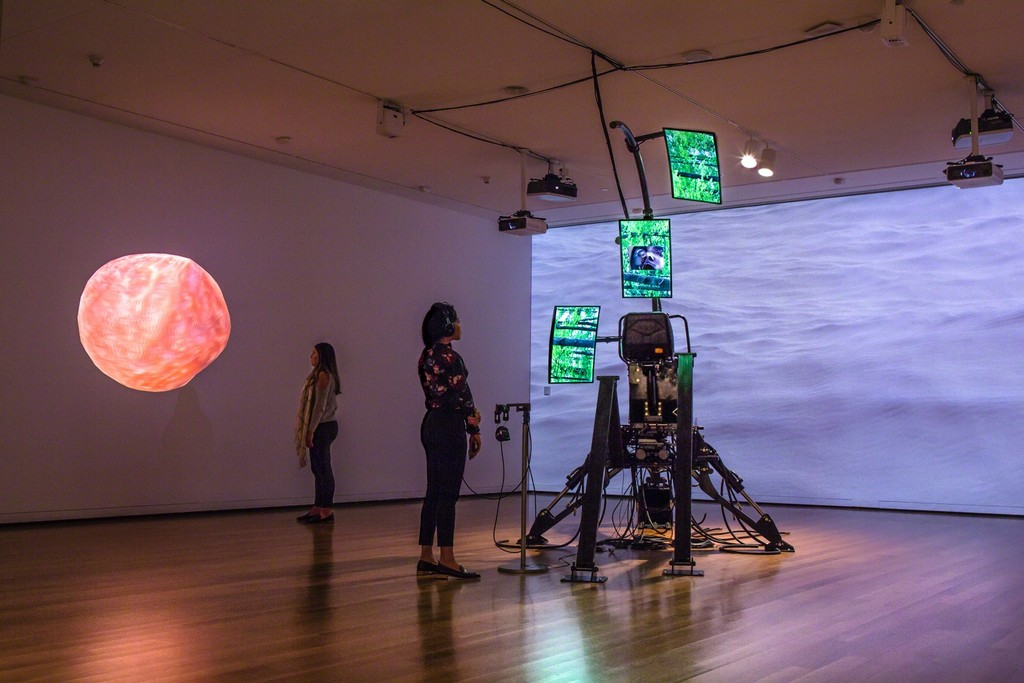 Installation view of Sondra Perry: Eclogue for [in]HABITABILITY at the Seattle Art Museum. © Seattle Art Museum, Photo: Natali Wiseman.