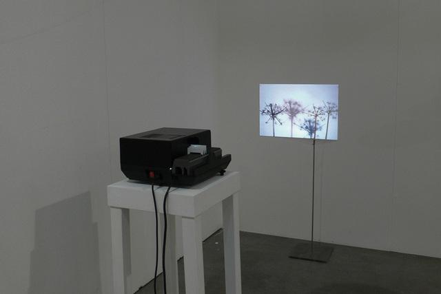 , 'Feedback #1,' 2012, Mazzoli