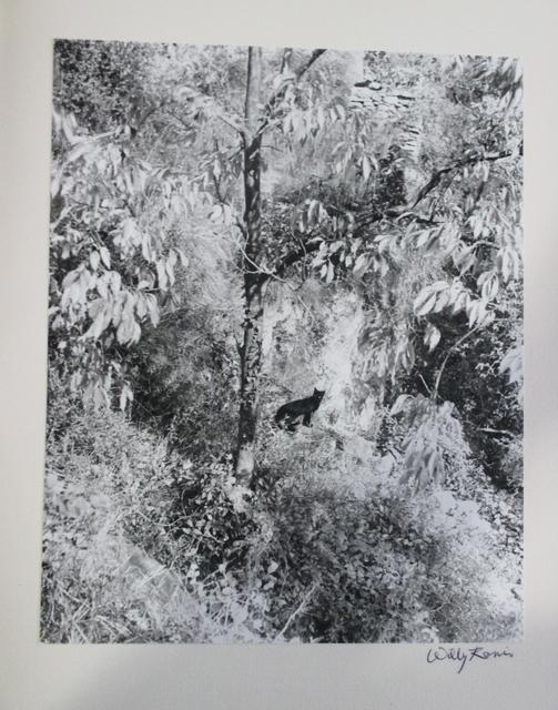 , 'La Chanson du Chat 4,' 1994, Fólio Livraria