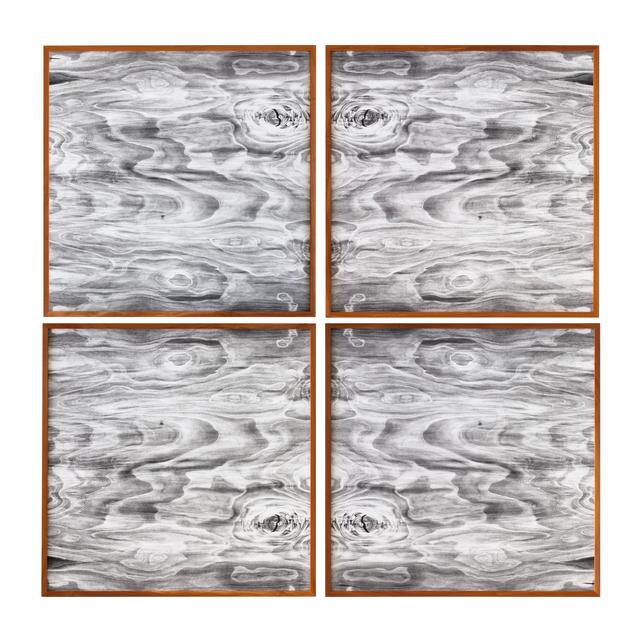 , 'Landscape Portraits (Apple) (Version III),' 2016, Galerie Juliètte Jongma