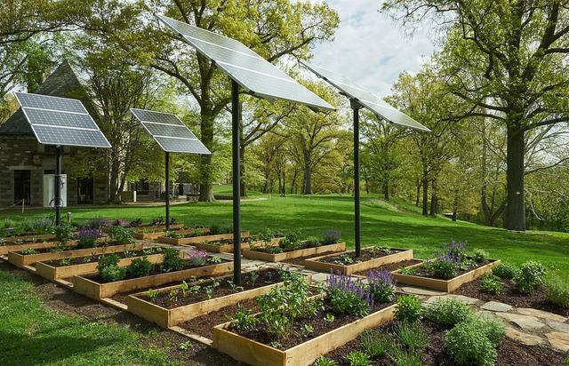 , 'Growing Under Solar Panels ,' 2018, Storm King Art Center