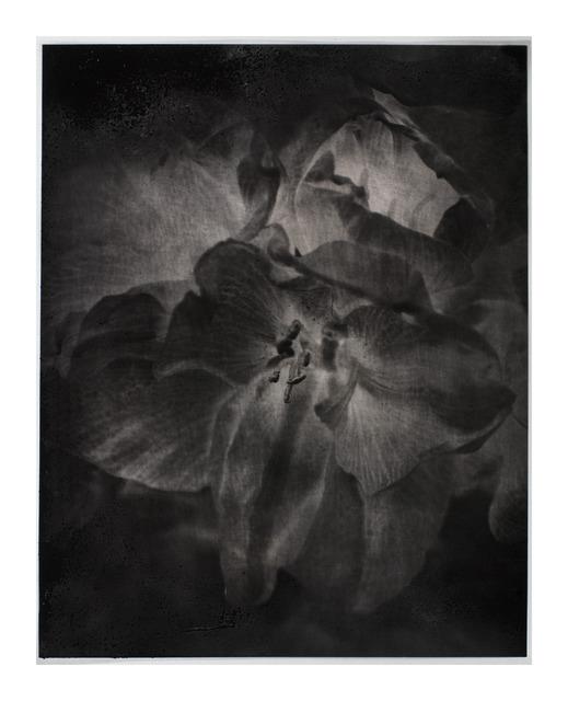 , 'La Passion #9,' 2012, Galerie Laurent Godin