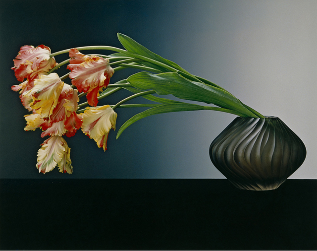 , 'Parrot Tulips,' 1988, Los Angeles County Museum of Art