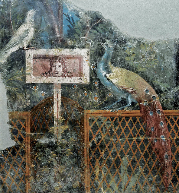 , 'Fresco of a peacock on a garden fence,' , Montreal Museum of Fine Arts