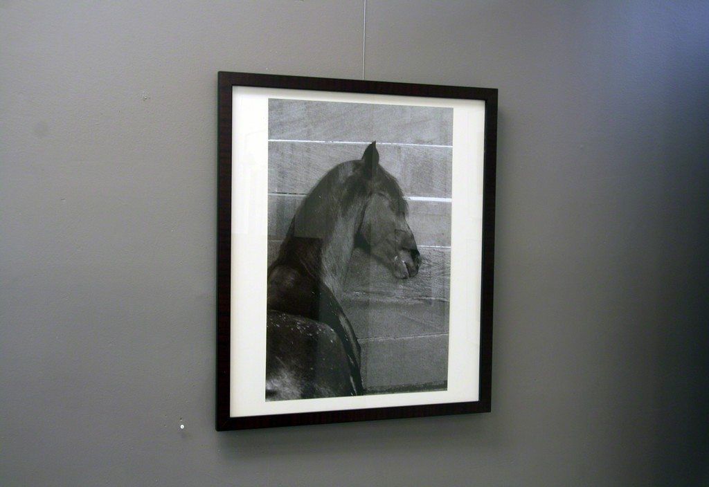 "Carolyn Krieg,Image:""Stalled Mare"", 2016, archival pigment print 1/5, 28 x 18.5"", 32x27.5"" framed. In a recent interview the artist spoke about her process, ""In one sense, that of observation, my process is the same. Out in the world I look with ""new"" eyes and ""soft"" eyes and the rest of my senses. This seeing directs my camera as I angle to capture whatever amazes me. In the studio I intuitively ""emerge"" the final pieces with drawing and painting techniques, still using ""new"" and ""soft"" eyes."""