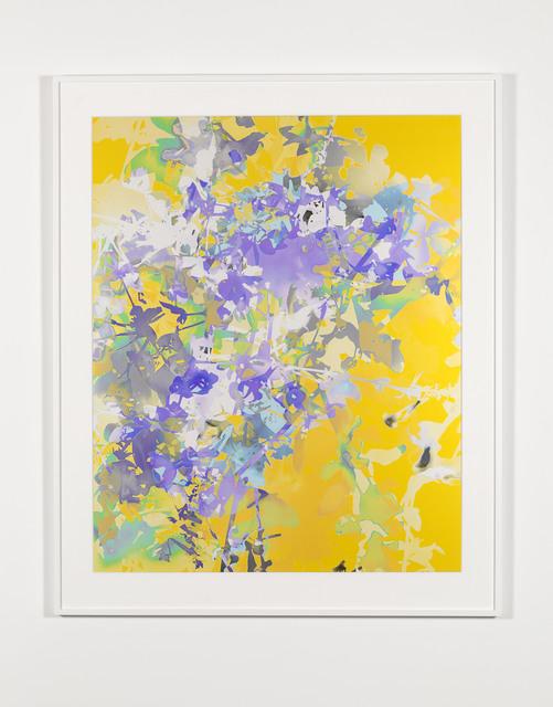 , '#5,' 2016, Marian Goodman Gallery