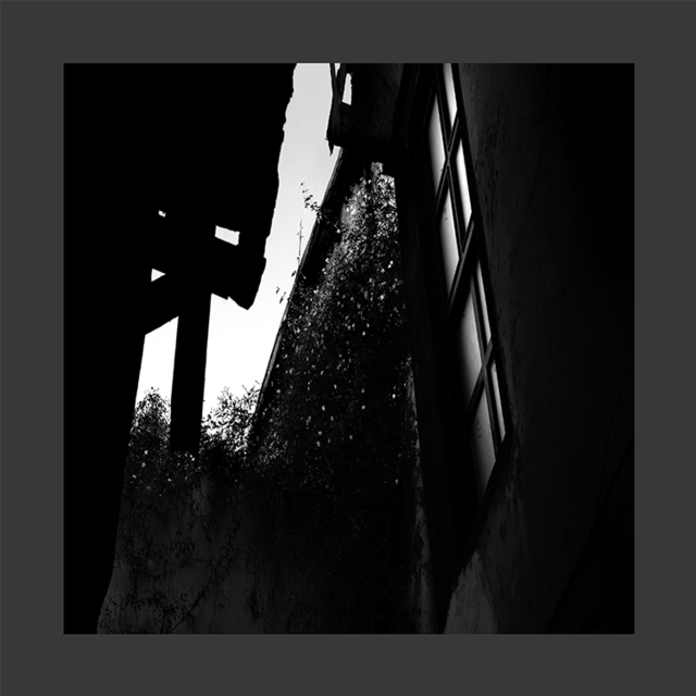 , 'Damas 11,' 2014, Artscoops