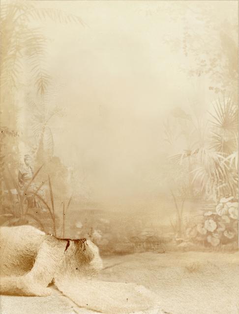 Andrés Pachón, 'Sin título 3', 2013, LA NEW GALLERY
