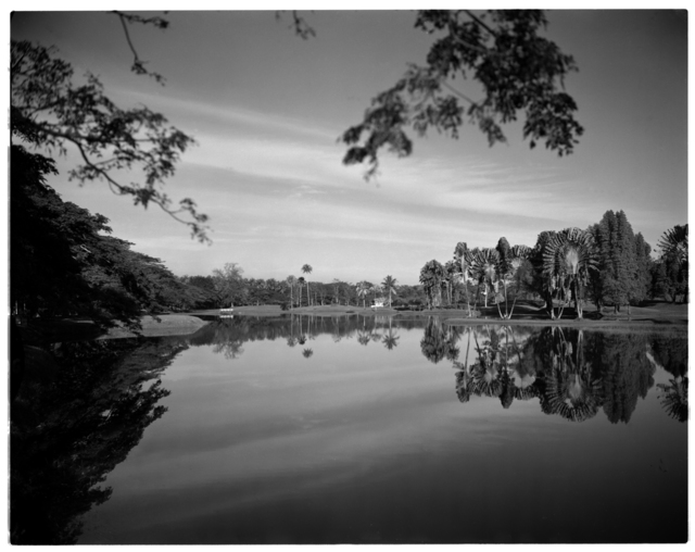 , 'Lake Gardens, Taiping,' 1952-1954, Sultan Ismail Photograph Editions