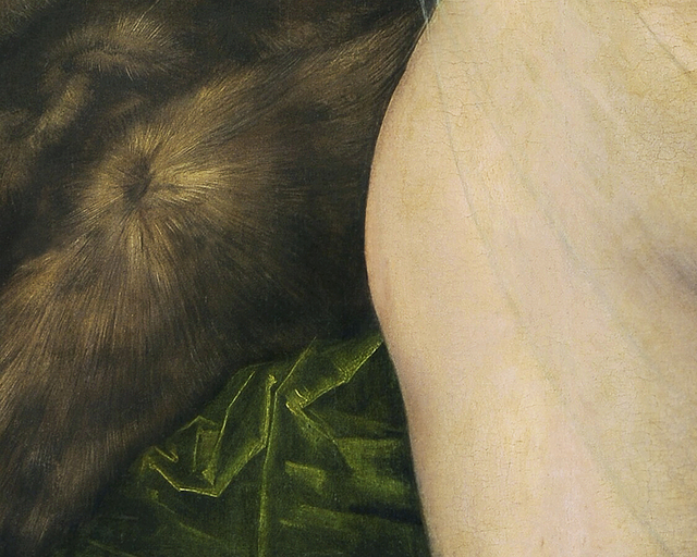 Maegan Hill-Carroll, 'Still Fur Fold Behind', 2018, Wil Aballe Art Projects | WAAP
