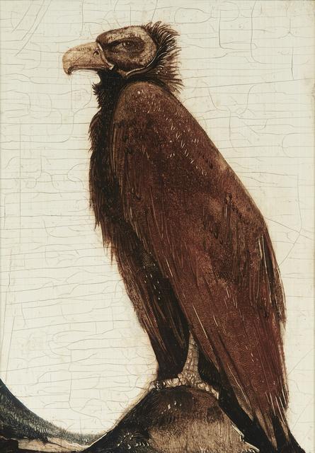 Willem van den Berg, 'Baby Vulture', 1922, Mireille Mosler Ltd.