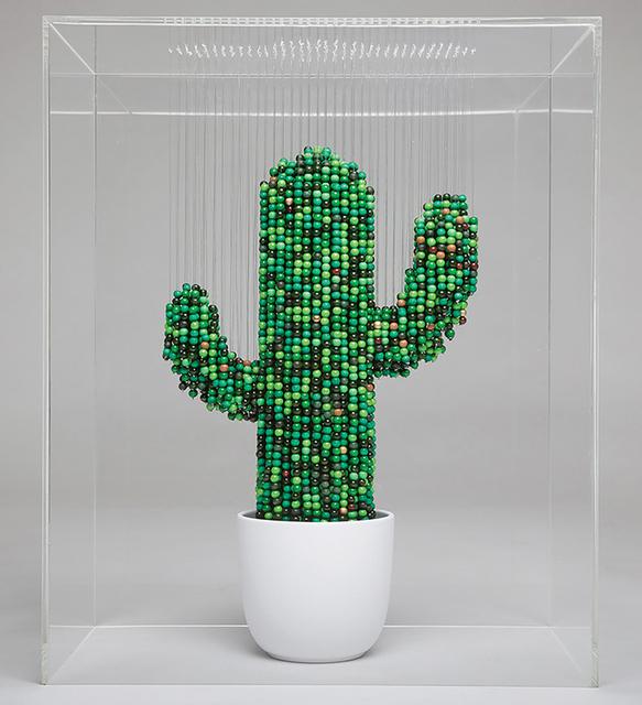 , 'Cactus,' 2017, Woolff Gallery