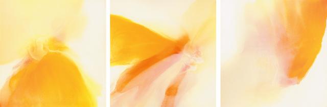 , 'Untitled Triptych 1,' 2016, Bill Lowe Gallery