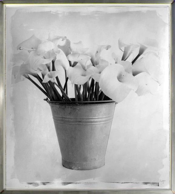, 'Arum Lillies,' 2007, HackelBury Fine Art