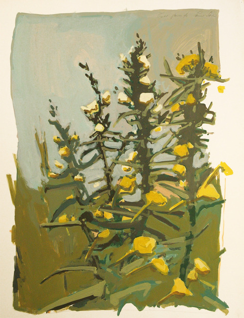 , 'Field Flower,' ca. 1980, C. Grimaldis Gallery