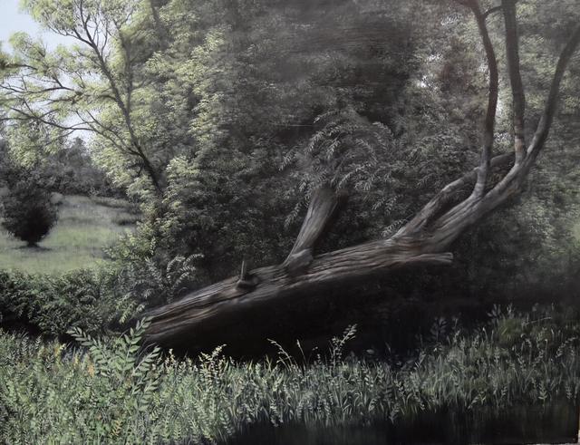 , 'Fallen,' 2016, Carrie Haddad Gallery