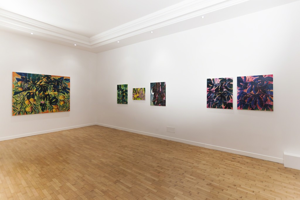 Nicholas William Johnson installation view