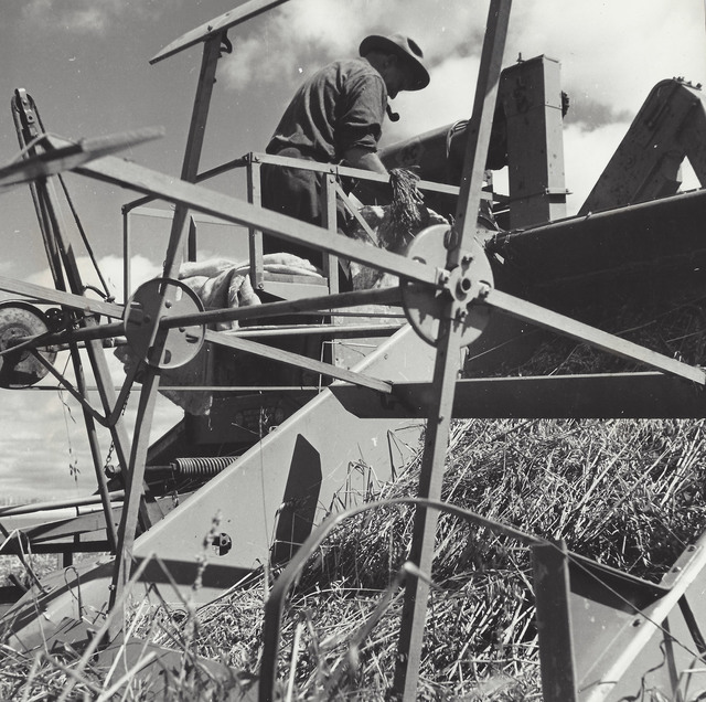 Gordon Parks, 'Harvesting Grain, Augusta, Maine', 1944, Elizabeth Houston Gallery