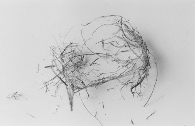 , 'The End (Nest Six),' 1999, John Davis Gallery