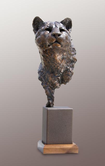 , 'Stealth, Cougar Bust,' 2016, Loch Gallery