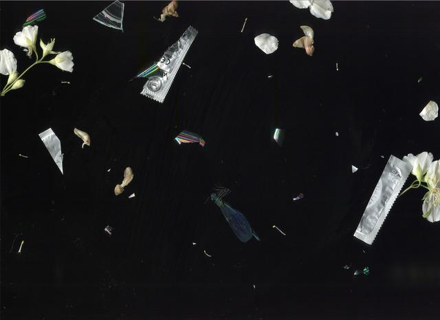 , 'Bois de Boulogne,' 2015, Pearl Lam Galleries