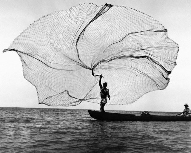 , 'The net, peacock of the sea (Ciénaga Grande, Colombia),' 1939, SET ESPAI D'ART