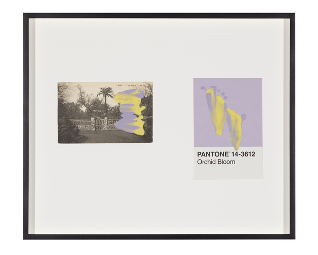 Tacita Dean, 'Pantone Pair (Orchid Bloom)', 2020, Painting, Found Pantone card paired with postcard from the artist's collection, monoprinted and framed to the artist's specifications, Gemini G.E.L. at Joni Moisant Weyl