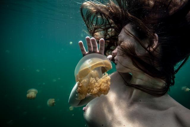 Amber Arbucci, 'Silent Medusa,' 2013, Avant Gallery