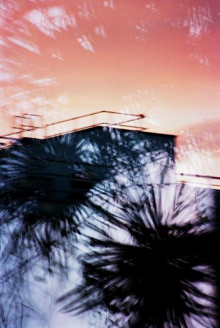 , 'Jungle Urbaine III,' 2016, Artig Gallery
