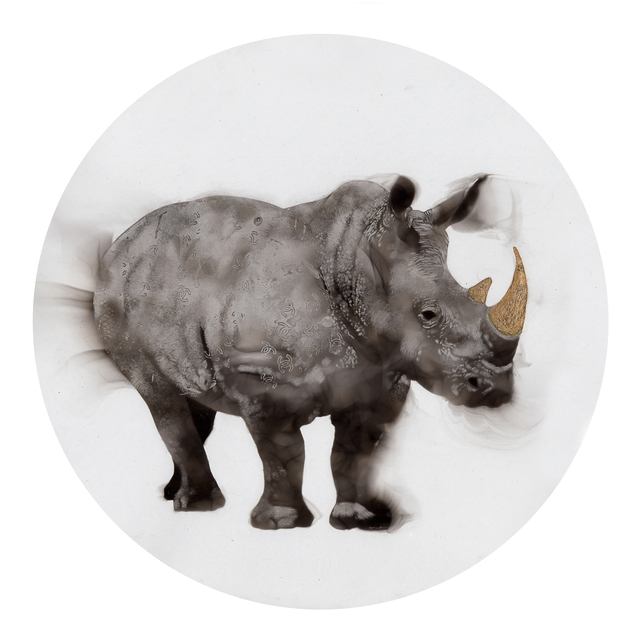 , 'Coco-Rhino,' 2017, Adelson Galleries