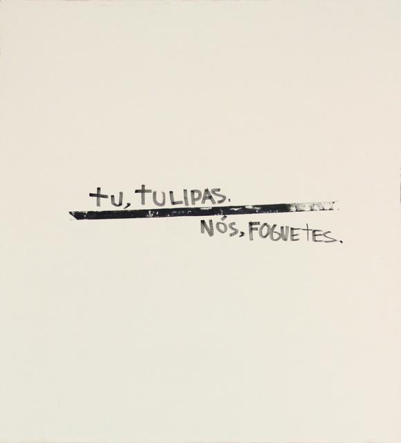 , 'Tu, tulipas, nós, foguetes,' 2015, Anita Schwartz Galeria de Arte