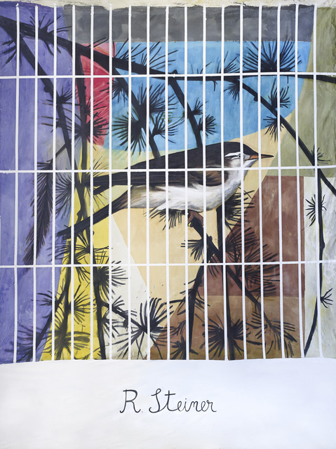 , 'Rudolph Steiner in a cage,' 2014, WORKPLACE