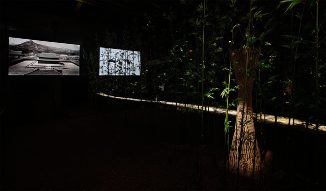 DMZ Project <夢의 庭園 / Dreaming of Earth> Installation view  Photo by Taedong Kim   Image provided by Kukje Gallery