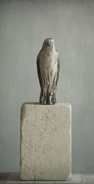 , 'Pescadero Bird,' 2017, Seager Gray Gallery