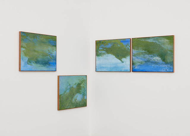 , 'seascape with cianobacteria,' 2017, Marianne Boesky Gallery