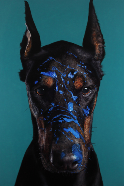 , 'Doberman Pinscher and Cobalt blue,' 2016, Johyun Gallery