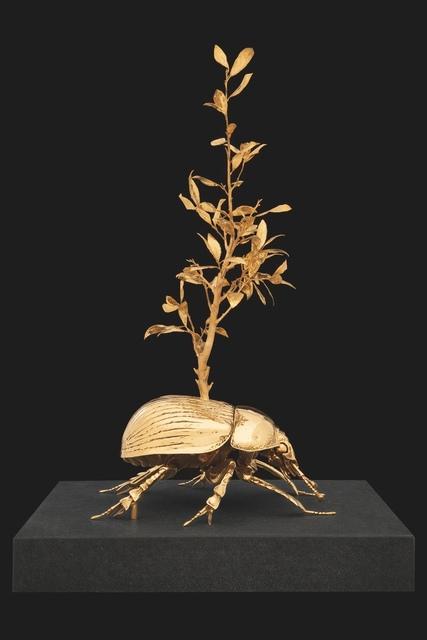 , 'Holy dung beetle with laurel tree,' 2016, Art Bärtschi & Cie   Geneva, Switzerland