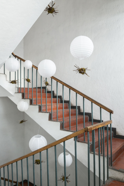 , 'Nido para Volar,' 2018, CuratorLove