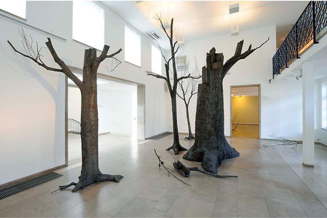 Mirsad Herenda, 'O.T. ( Forest)', 2011-2012, GALERIE BENJAMIN ECK