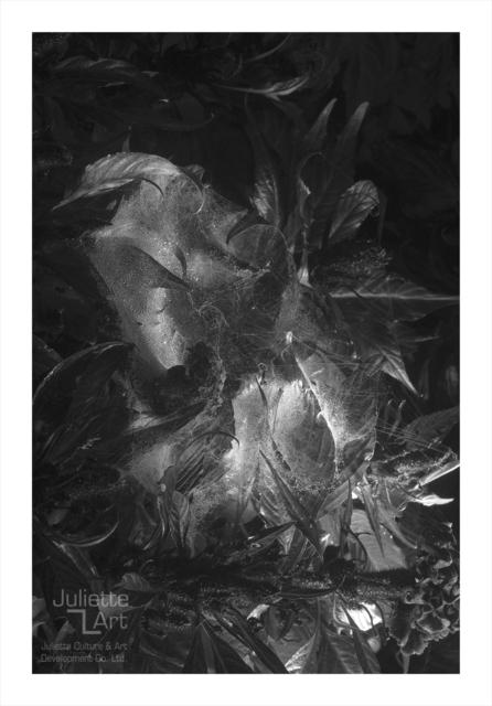 , 'The Light of Dark Night No.17,' 2013, Juliette Culture and Art Development Co. Ltd.