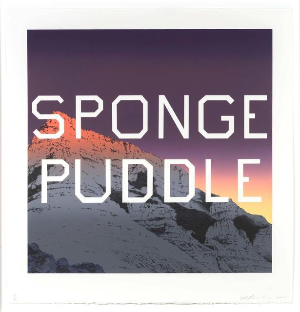 , 'Sponge Puddle,' 2015, Hamilton-Selway Fine Art