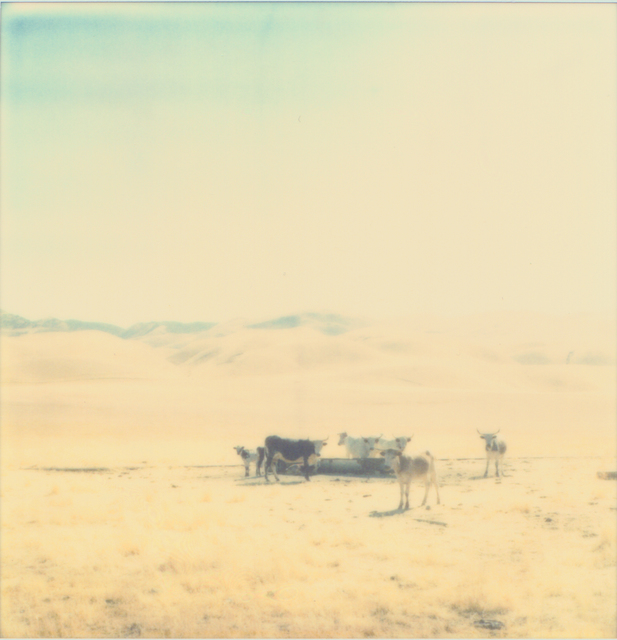 Stefanie Schneider, 'Untitled - Oilfields', 2004, Photography, Analog C-Print, based on an original expired Polaroid, not mounted, Instantdreams