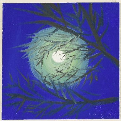 , 'Moon (Blue Moon, Lime Green Light, Cushing, 7-31-15, 11:30PM), 2015,' 2015, Nina Johnson