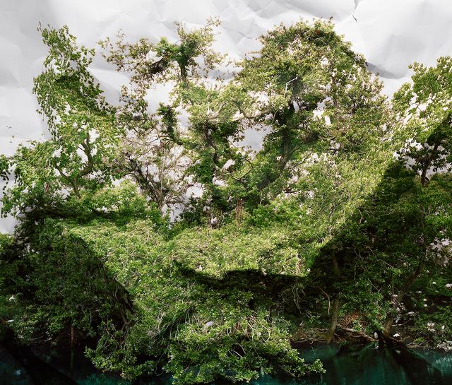 , 'Response to Print of Egret Rookery, Louisiana,' 2010, De Soto Gallery