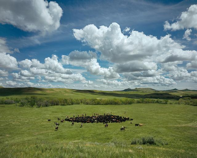 , 'Round Up No. 2, McKenzie County, North Dakota,' 2005, Kopeikin Gallery