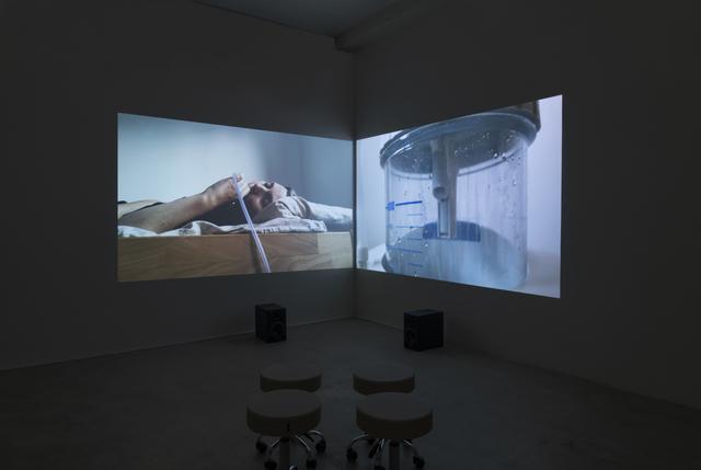 Heather Dewey-Hagborg, 'T3511', 2018, Fridman Gallery